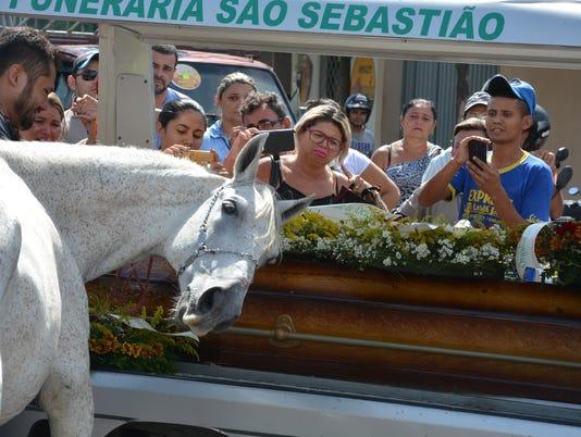 Horse mourns loss of owner Brazil