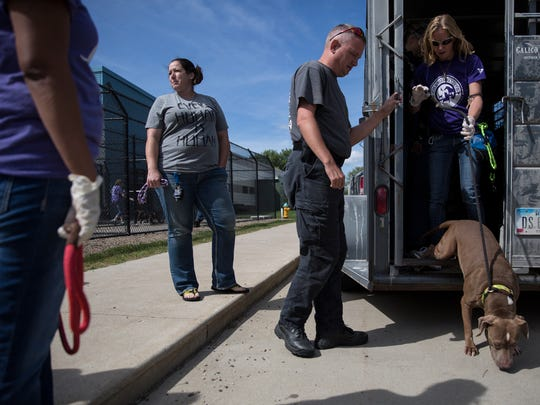 Animal Rescue League of Iowa staff unload dogs from a trailer that just returned from shelters in Texas to make more room for dogs lost during Hurricane Harvey on Wednesday, Sept. 6, 2017, at the ARL, in Des Moines.