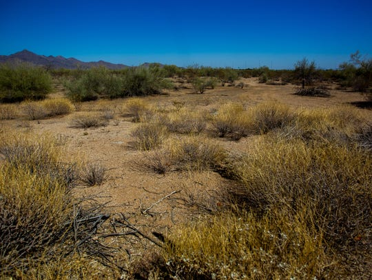 Undeveloped land on Wednesday, June 20, 2018, in Scottsdale,