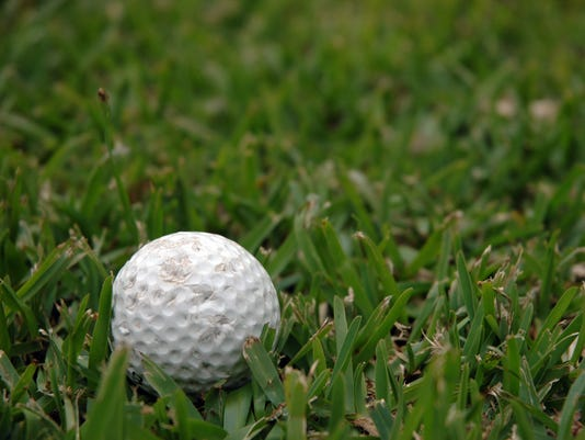 Chewed Golf Ball