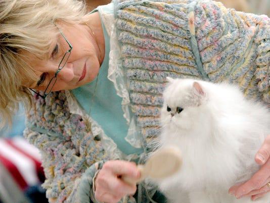 -Cat02.jpg_20060401.jpg