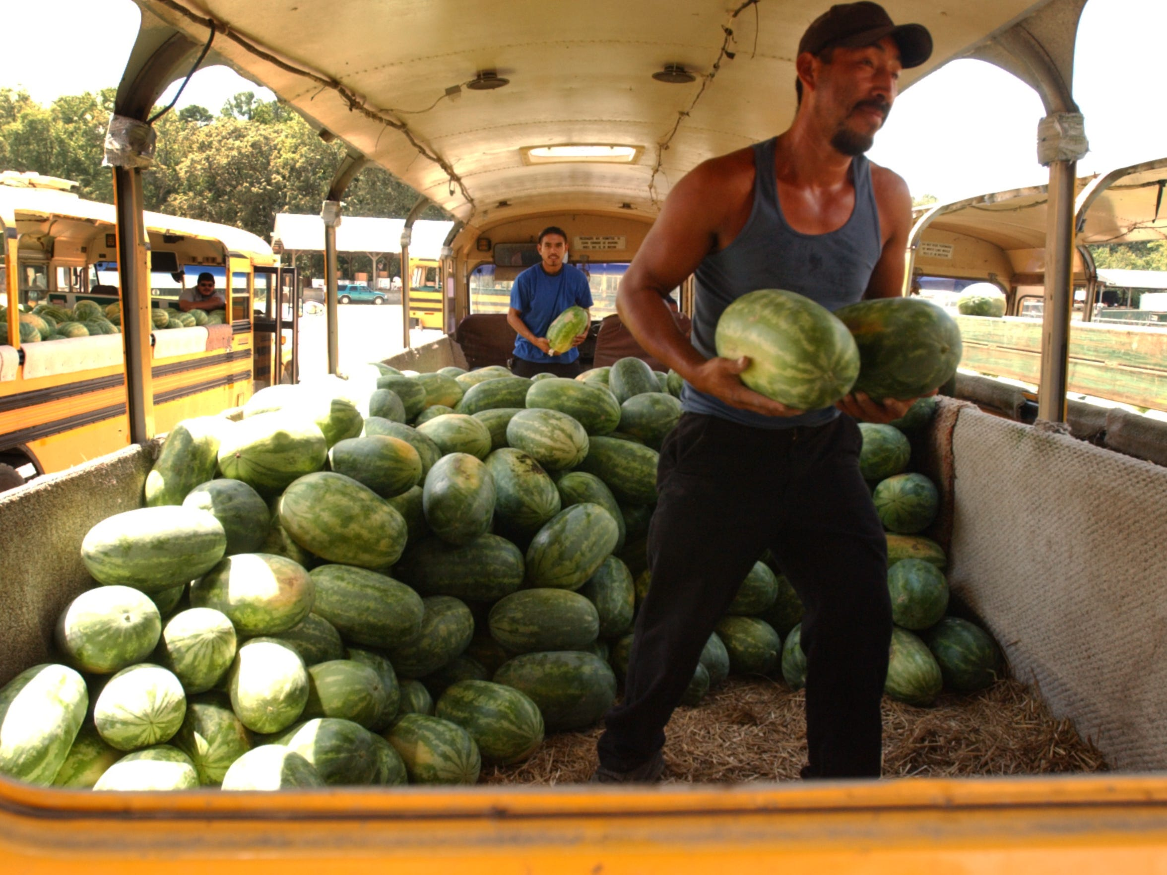 Workers unload a bus at the Laurel Farmers Auction Market in August 2008.
