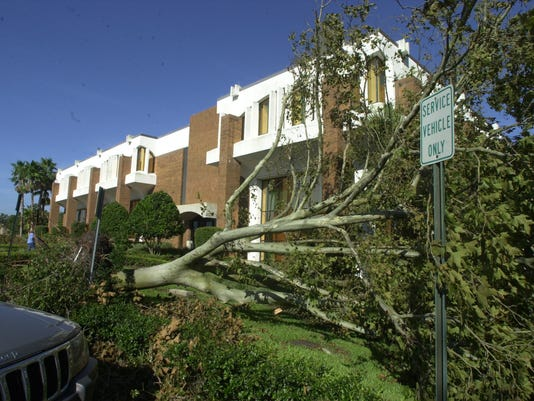 636003080504421458-hurricane-trees.JPG