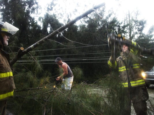 SHAWN BRANT CUTS TREE BY POWER LINE