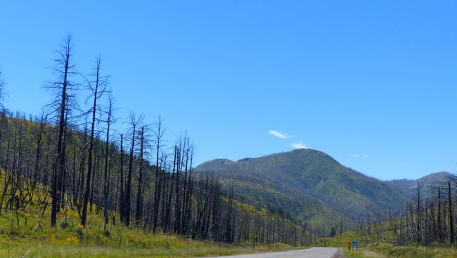 The landscape along New Mexico 37 between Carrizozo and Ruidoso still bears the scars of the Little Bear Fire.
