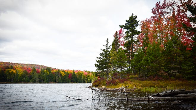 The New York State Department of Conservation has made a Draft Recreation Management Plan for the Flatrock Mountain Conservation Eastment available for public comment.