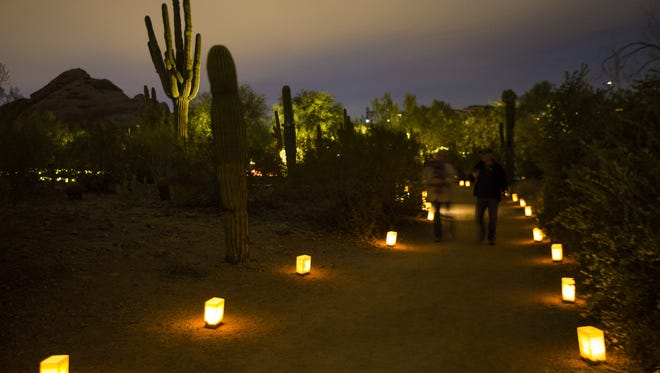 Las Noches de las Luminarias display at Desert Botanical Garden in Phoenix.
