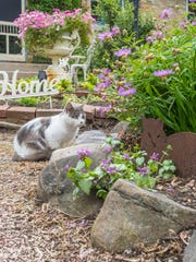 The Giese garden is one of six that will be part of