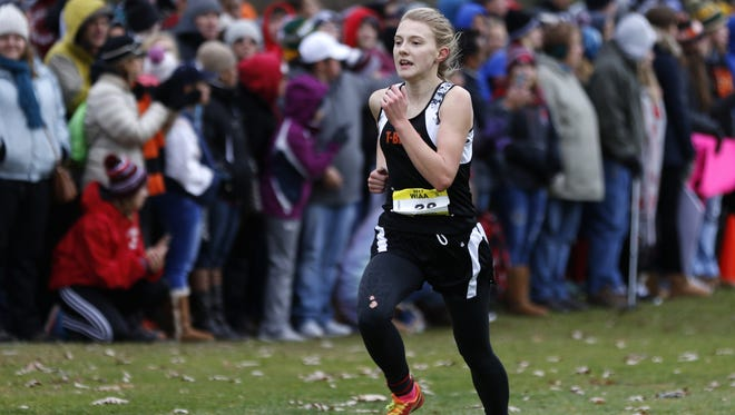 Iola-Scandinavia's Erika Kisting was selected for the 2018 WIAA Scholar Athlete Award thanks to her hard work in the classroom and a strong athletic career.