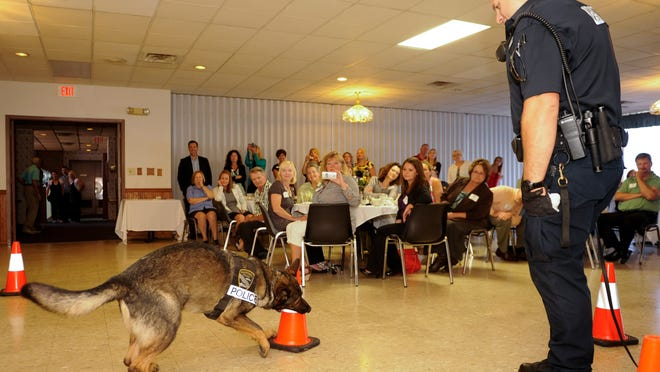 """Jason Koenig, Manitowoc police K-9 unit officer with his German Shepherd partner, Ully, gives a demonstration on Monday of the dog's ability to find drugs, including a stash of marijuana underneath the traffic cone at the Chamber of Manitowoc County's """"Business Connects with Government"""" luncheon program."""