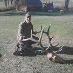 Doug Fellman took this elk in the Highwoods.