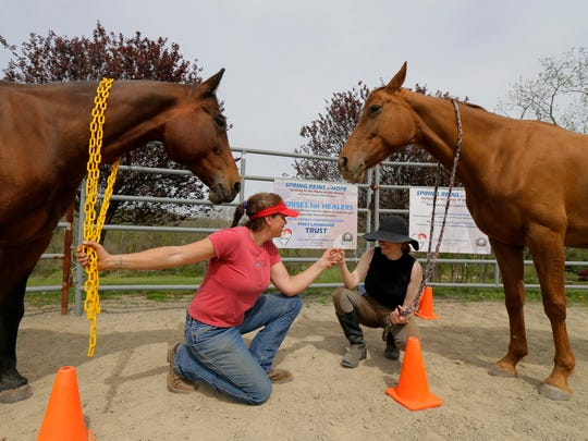 Dr. Maria Katsamanis (right) founder of Horses for Healers Workshop, and Christianna Capra, CEO/president and founder Spring Reigns of Hope, work with Junior Miff and Syriana in the ring at Foxx Creek Farm in Hillsborough.