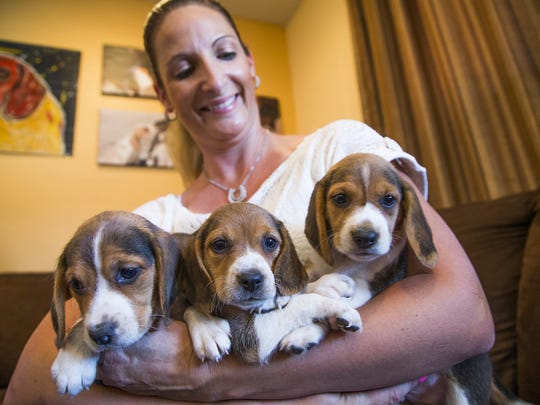 Laura Dunlap started in her first year with just two adults and one litter of puppies.