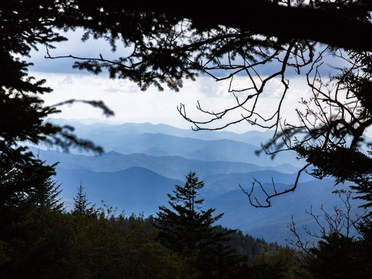 A view from a trail on Richland Balsam mountain on the Blue Ridge Parkway.