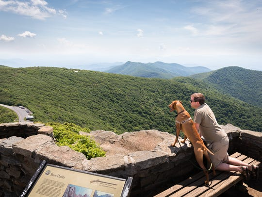 A hiker and his dog take in the view at the summit