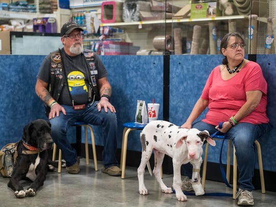 Bill Lawerence (left) and Pam Lawerence (right) attend a puppy training class with their Great Dane puppy Furgus (bottom right) at PetSmart in Evansville, Ind., Saturday, Oct. 21, 2017. Furgus, who successfully graduated from the training class on Saturday, was born with one missing paw and now sports a prosthetic leg to help him walk.