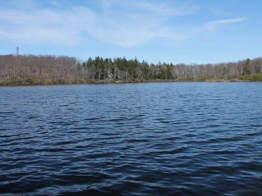 Tamarack Pond, Black Rock Forest.