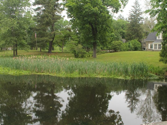 The pond at Val-Kill Cottage on June 4, during the Hyde Park sixth annual End-2-End Hike.