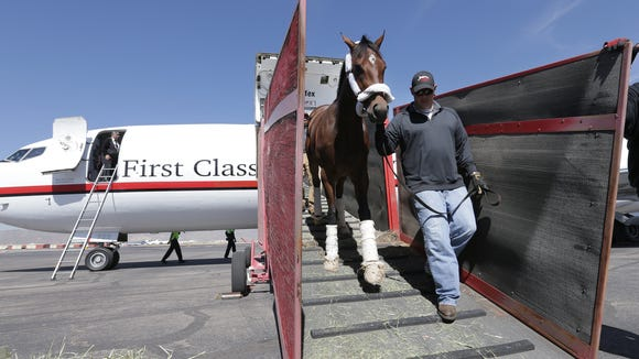 Three horses from the Todd Pletcher Racing Stabels out of Florida which scheduled to race on derby day at Sunland Park Racetrack and Casino arrived Tuesday at Atlantic Aviation at the El Paso International Airport. Catsdiva who is racing in the Harry Henson Handicap, Ghalia in the Sunland Park Oaks and Hedge Fund who is appearing in the Derby.