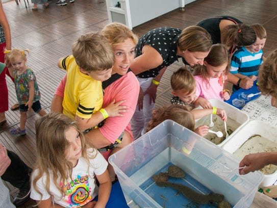 You'll be amazed at what you can learn at Discovery
