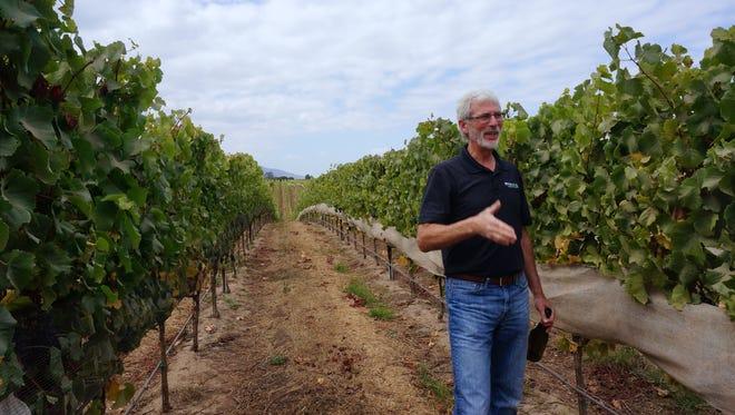 Winemaker Steve McIntyre in his Santa Lucia Highlands vineyards.