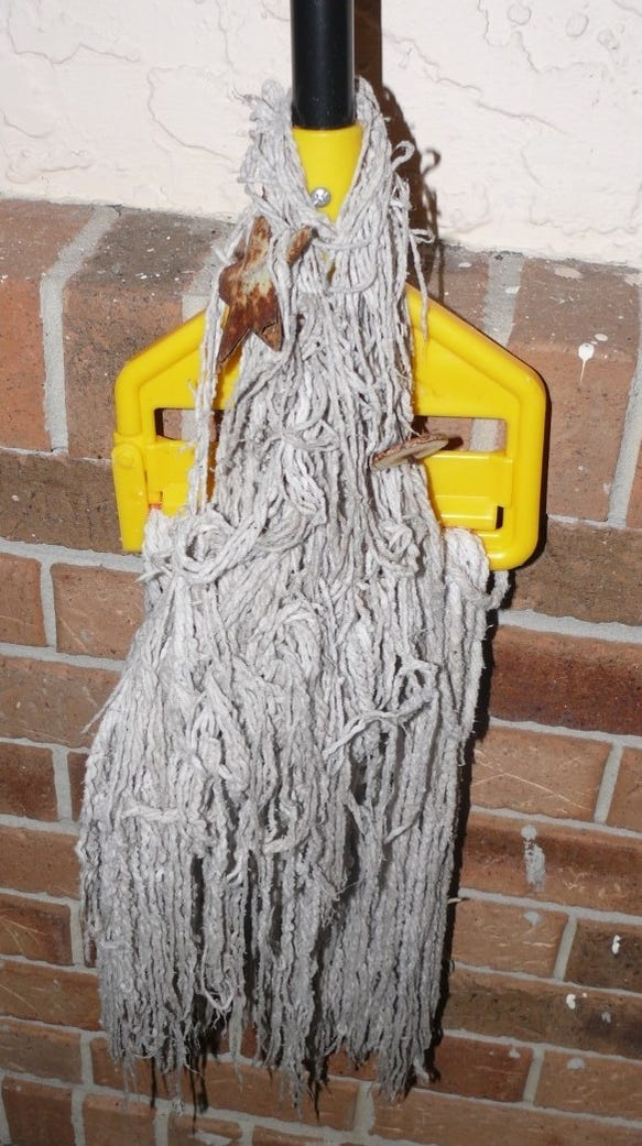 Mop recovered in case