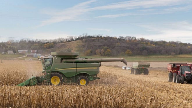 Friends and neighbors of the Burt County farmer who died while investigating an anhydrous ammonia leak gathered to harvest his corn crop.