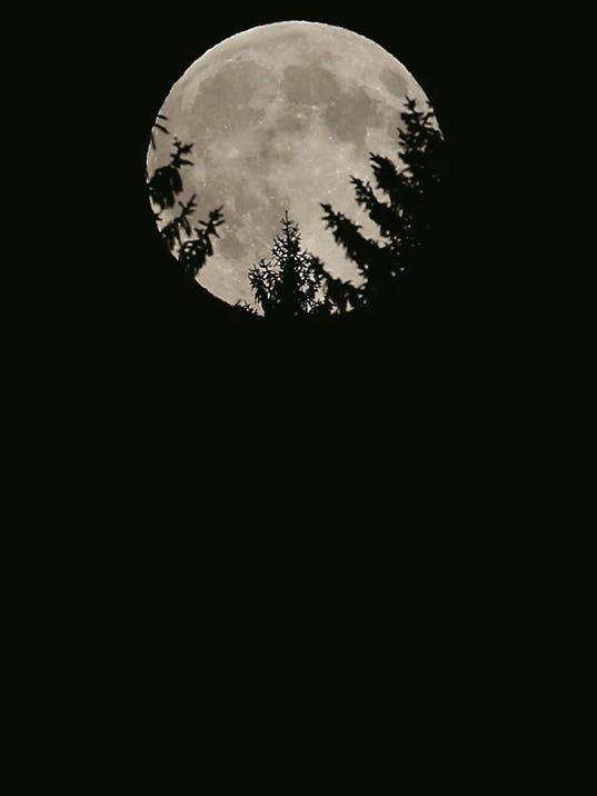 snl Background.jpg