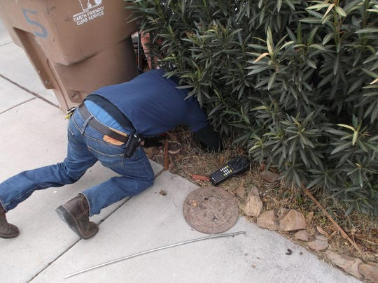 Utility meters are frequently difficult to access because of overgrown bushes and hedges.