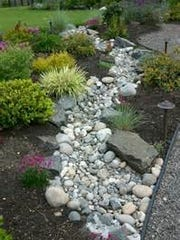 A dry creek bed.
