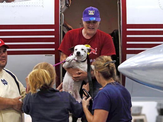 The first rescue dog is offloaded as St. Hubert's Animal