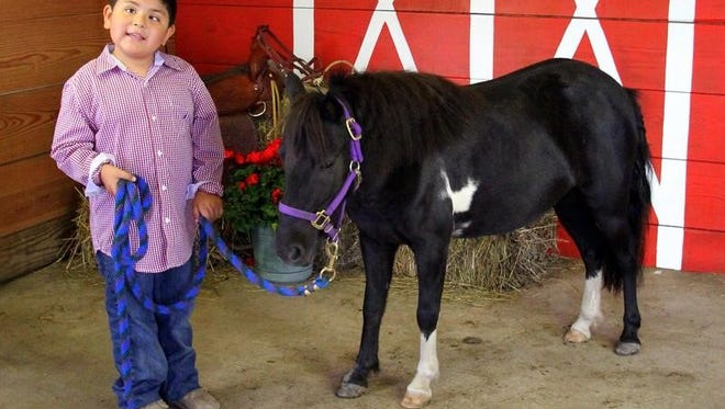 Romeo Vera, 7, was born legally blind and participates in Free SPIRIT Riders' therapy.