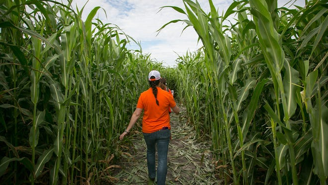 Rockin' K Corn Maze will offer free weekend admission for military and public servants.