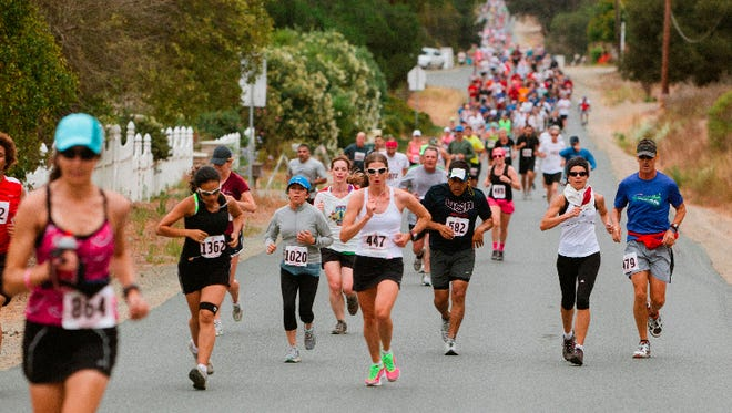 Nearly 1,000 runners are expected to navigate the 13.1-mile course in the 8th annual Salinas Valley Half Marathon on Saturday. Race starts at 8 a.m.