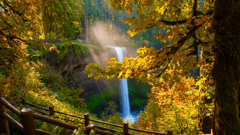 A dozen places to find colorful fall leaves near Salem