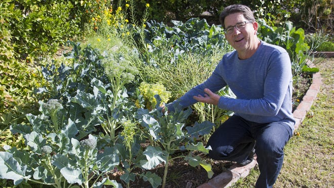 The Urban Farm In Phoenix Teaches People How To Grow Their Own Food
