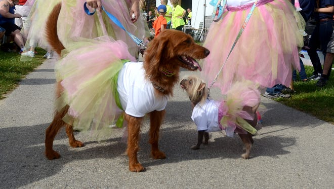 Twins, Yvonne Kolinski, of Kimball Township, left and Yvette Ware, of Marysville, wear tutus along with their dogs, during the Mutt March.