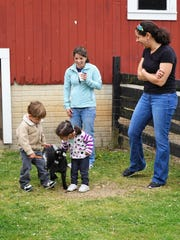 Children can get acquainted with baby animals at Farm