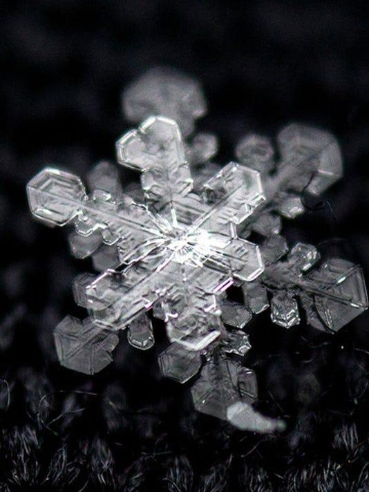 snowflake_1415822567585_9570051_ver1.0_640_480.jpg