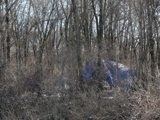 """This is a photo of """"Hobo Junction"""" off of Chestnut Expressway in February after police cleared the property of homeless people. Little was done to the property to prevent re-encampments. Recently, though, city contractors cleared the property of shrubs and small trees to make it difficult to hide a tent."""