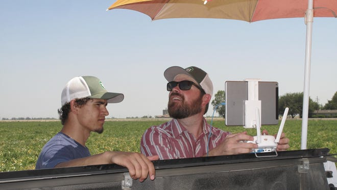 In this photo taken July 25, 2016, Danny Royer, right, vice president of technology at Bowles Farming Co., pilots a drone over a tomato field near Los Banos, Calif. At left stands college intern, Christian Cambrelen. The farm hired Royer this year to oversee drones equipped with a state-of-the-art thermal camera that scan from a bird's-eye view for cool, soggy patches where a gopher may have chewed through the buried drip irrigation line and caused a leak of the precious resource. On the farm's 2,400-acre tomato crop alone, this year drones could detect enough leaks to save water needed to sustain more than 550 families of four for a year. (AP Photo/Scott Smith)