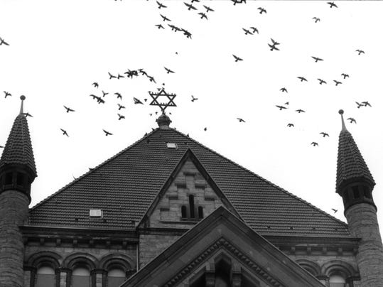 Birds over synagogue, Cologne..jpg