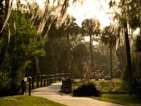 Walking paths trace the Silver River at Silver Springs