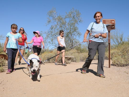 Wag & Walk dog hikes are on the first Saturday of the
