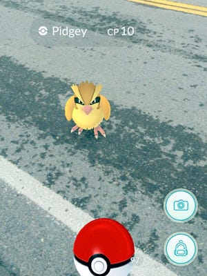 When you encounter a Pokemon it will appear in front of you on your phone device using your camera and whatever background you have while you are walking.