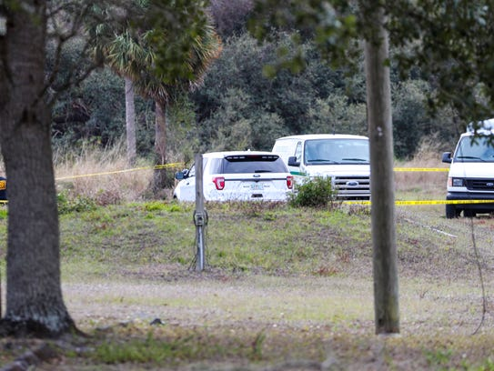 Human remains have been found in Alva's Charleston
