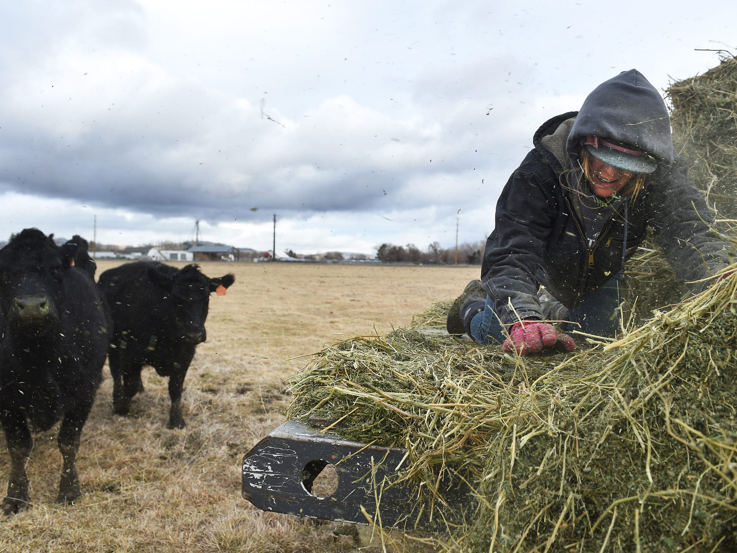 Student employee Mallory Goodrick feeds livestock after