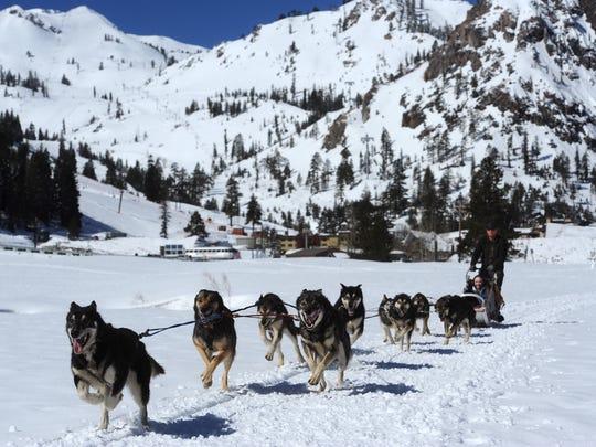 Writer Sarah Litz joins Wilderness Adventures Dog Sled