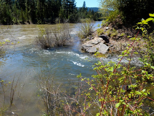 Confluence of Belmont Creek and the Blackfoot River.