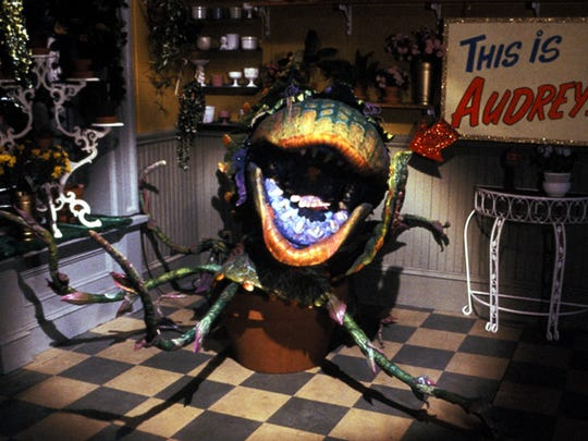 "Audrey II in a scene from ""Little Shop of Horrors,"""